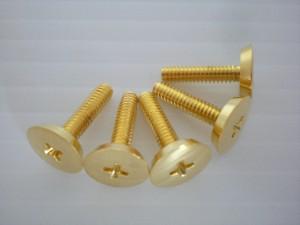 皿小ネジの真鍮メッキ加工事例